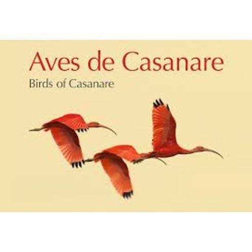 AVES-DE-CASANARE