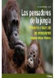 PENSADORES-DE-LA-JUNGLA-LOS-PRESENTE-Y-FUTURO-DE-LOS-ORANGUTANES